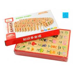 [SOLD OUT]Wooden Domino 100 pcs 知识多米诺(100片)